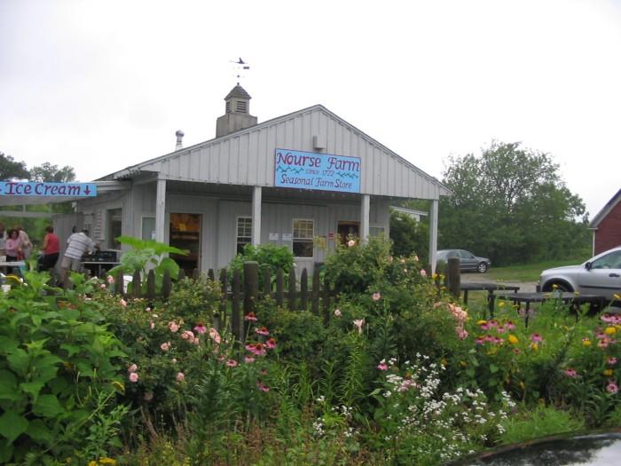 Nourse Farm in the downpour