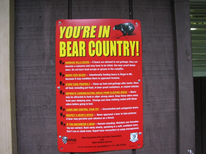 Beware of Bears
